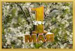 Picture postcard mms Трехмерная надпись — 1 Мая, Салют на фоне распустившихся яблоневых цветов happy birthday