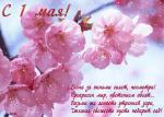 Picture postcard mms Распустившиеся розовые цветы Яблони, надпись — Весна за окнами сияет, посмотри! happy birthday