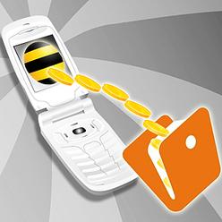Как пополнить баланс телефона билайн