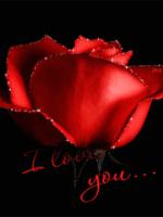 Picter for Multimedia Messaging Service declaration of love Number 1