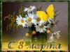 Picture postcard mms Ромашки, Бабочки happy birthday