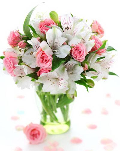 Картинки цветов красивые - 0de5