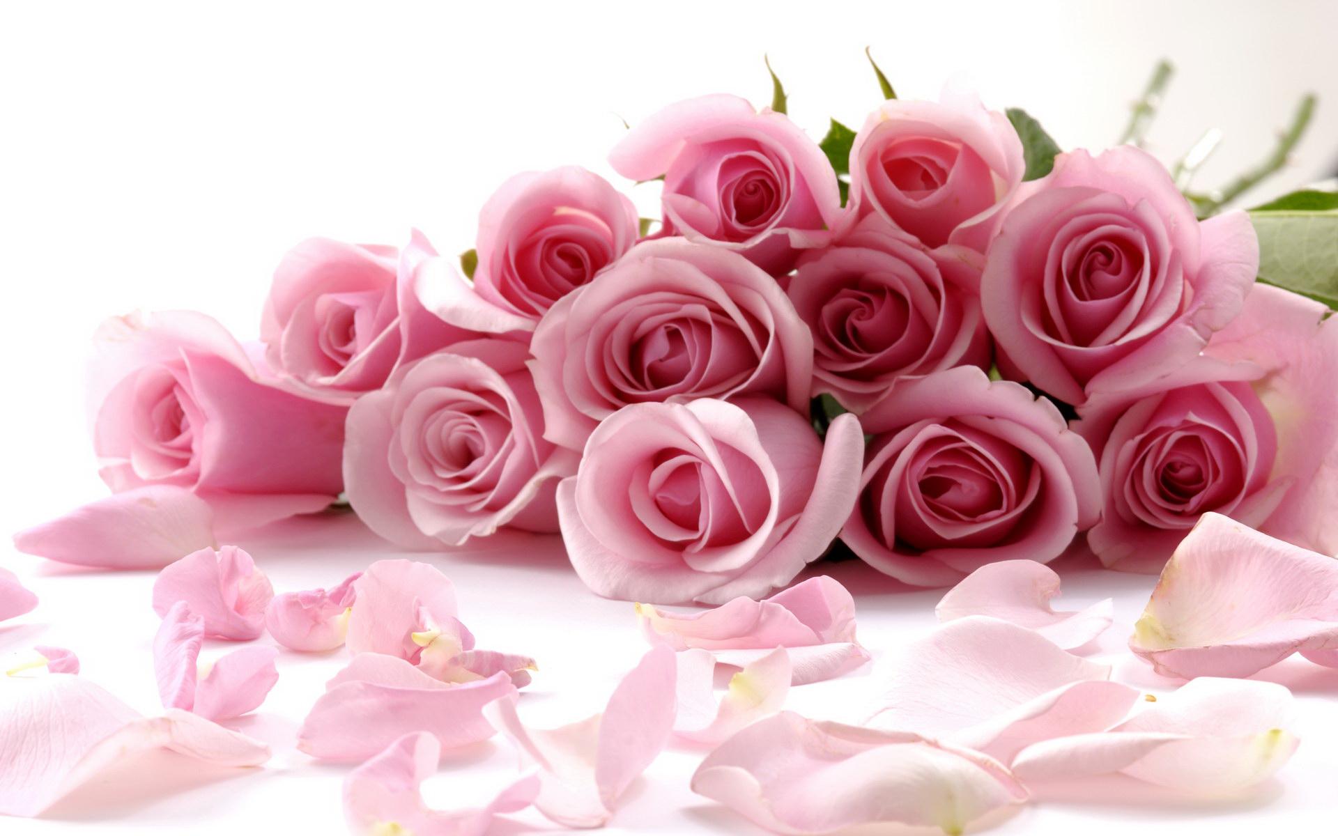 Открытки с днем рождения женщине цветы без надписей