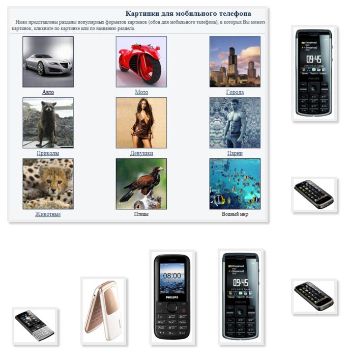 Simple pictures phone Philips funny
