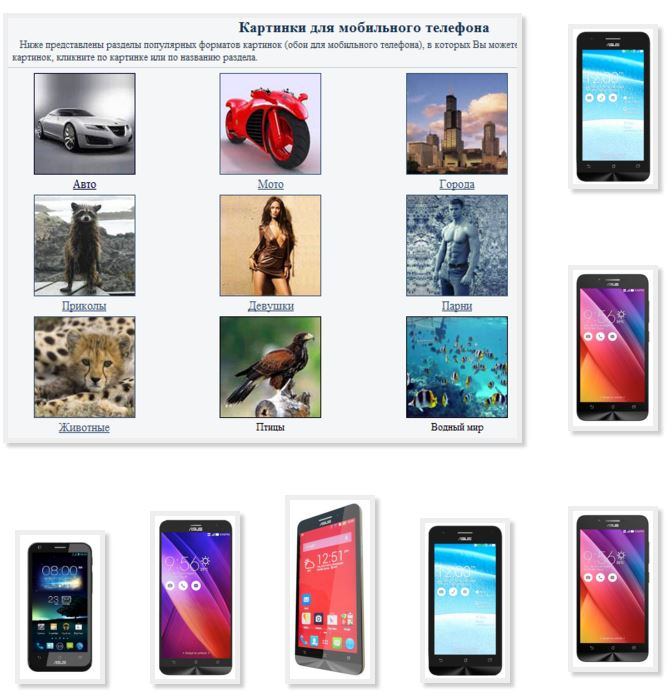 Simple pictures phone asus funny