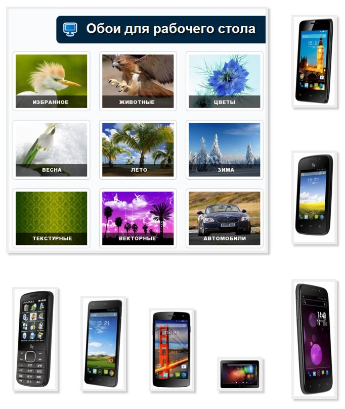 Pictures phone Fly download free without registration advertising
